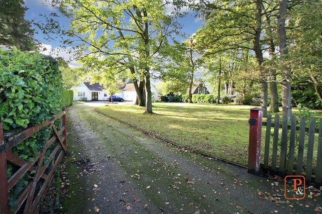 Thumbnail Detached bungalow for sale in Playford Road, Little Bealings, Woodbridge, Suffolk