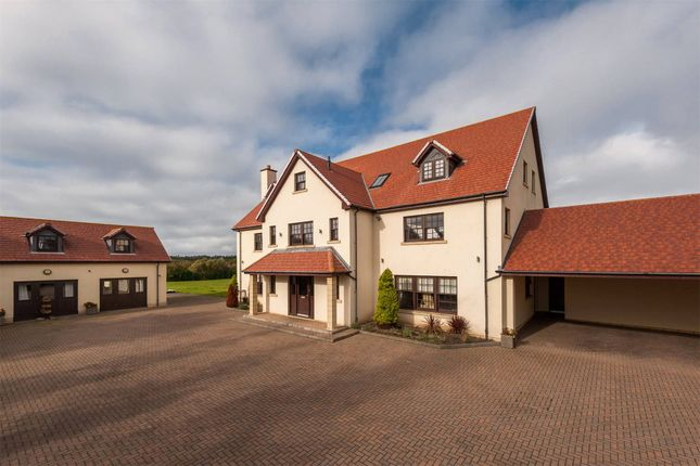 Thumbnail Detached house for sale in The Village, Archerfield, North Berwick