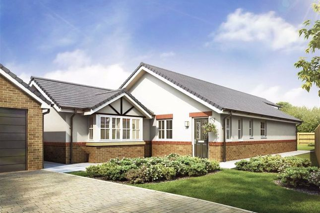 Thumbnail Detached bungalow for sale in Garstang Road, Bowgreave, Preston