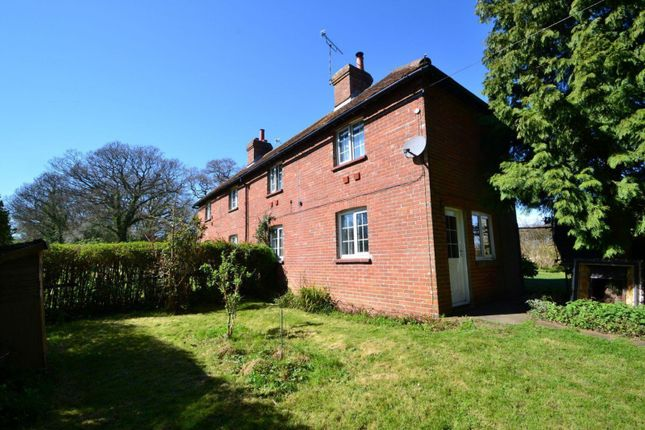 Thumbnail Property to rent in London Road, Ashington, Pulborough