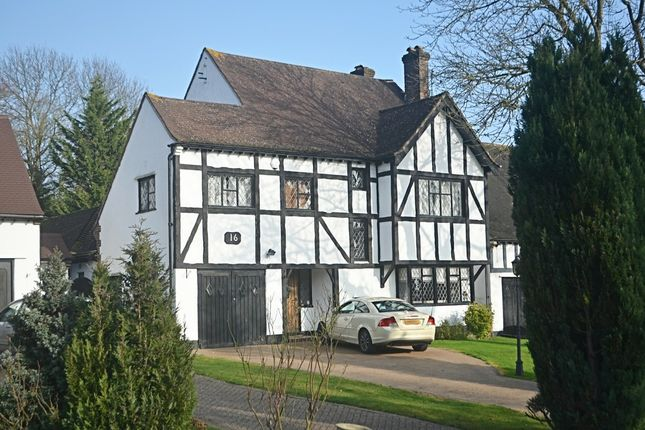 Thumbnail Detached house for sale in The Covert, Petts Wood, Orpington