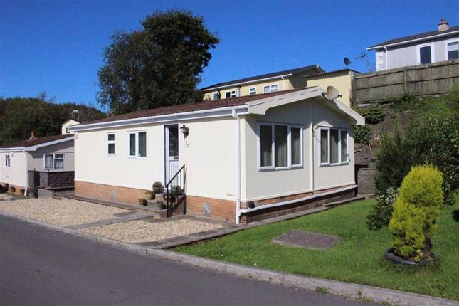 Ash Grove, Woodland Park, Waunarlwydd SA5