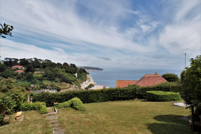 Thumbnail Detached house for sale in Southdown Road, Beer, Seaton