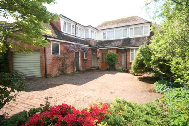 Thumbnail Detached house to rent in Branksea Avenue, Hamworthy, Poole