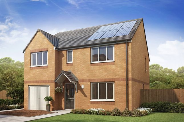 """Thumbnail Detached house for sale in """"The Thornwood """" at Etna Road, Falkirk"""
