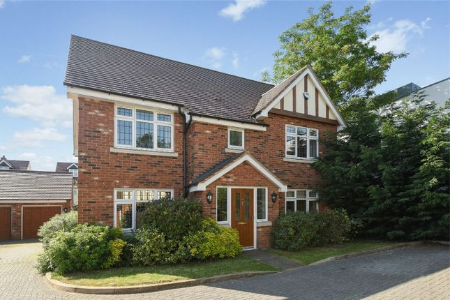 Thumbnail Detached house for sale in Maple Place, Bedford