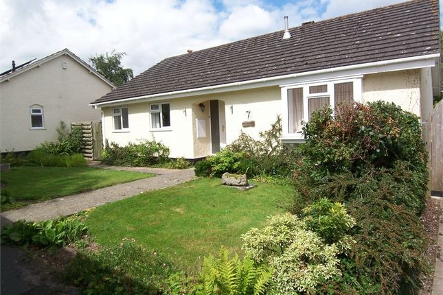 Thumbnail Semi-detached bungalow to rent in Govers Meadow, Colyton