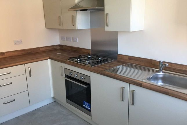 Thumbnail Terraced house to rent in Sundew Court, Darlington