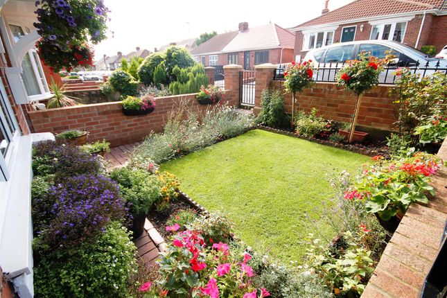 Further Front Garden Image
