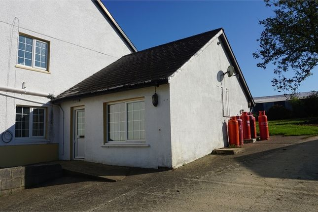Thumbnail Semi-detached house to rent in Eglwyswrw, Crymych, Pembrokeshire