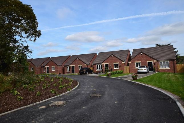 Thumbnail Detached bungalow for sale in Plot 5, Clay Fields View, Clay Cross, Chesterfield