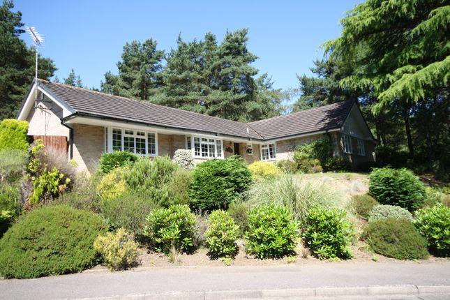 Thumbnail Detached bungalow for sale in Egmont Close, Avon Castle, Ringwood