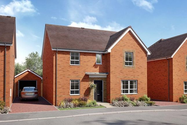 """Thumbnail Detached house for sale in """"Linnet"""" at Sulgrave Street, Barton Seagrave, Kettering"""