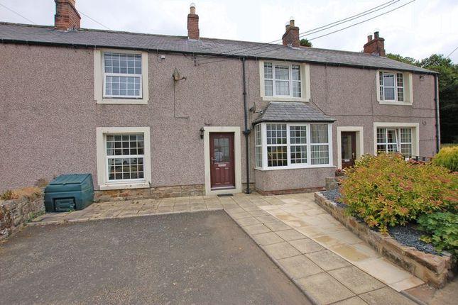Thumbnail Flat to rent in Otterburn, Newcastle Upon Tyne