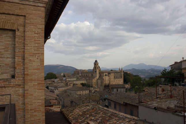 Thumbnail Town house for sale in Urbino, Pesaro And Urbino, Marche, Italy