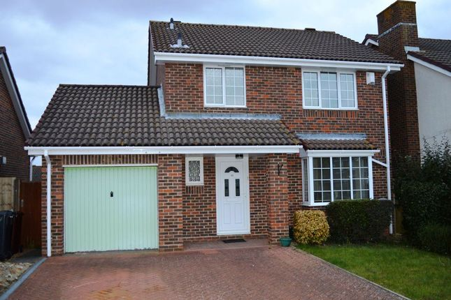 Thumbnail Property to rent in Hambleton Close, Eastbourne