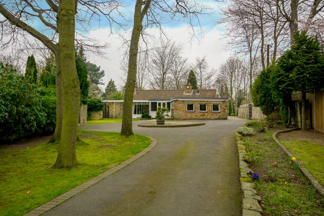 Thumbnail Bungalow for sale in 9 Whin Hill Road, Bessacarr, Doncaster, South Yorkshire