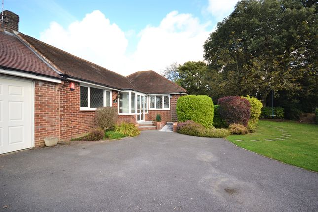 3 bed detached bungalow to rent in Norton Lane, Norton, Chichester PO20