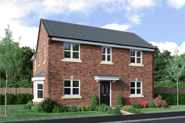 "Thumbnail Detached house for sale in ""Repton"" at Milby, Boroughbridge, York"