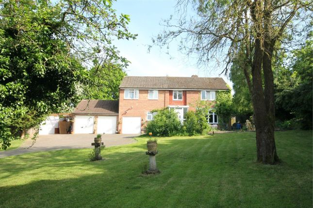 Thumbnail Detached house for sale in Westmead Drive, Newbury