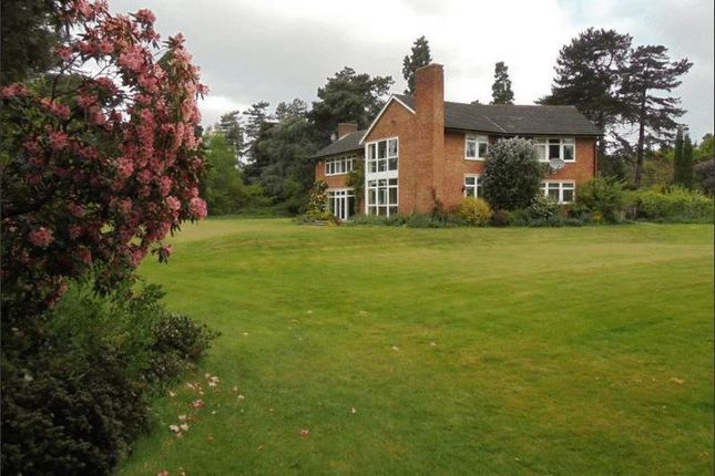 Thumbnail Detached house to rent in Ranby, Retford
