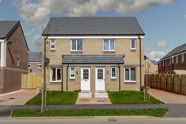 "3 bedroom semi-detached house for sale in ""The Ardbeg"" at Dunlop Road, Stewarton, Kilmarnock"