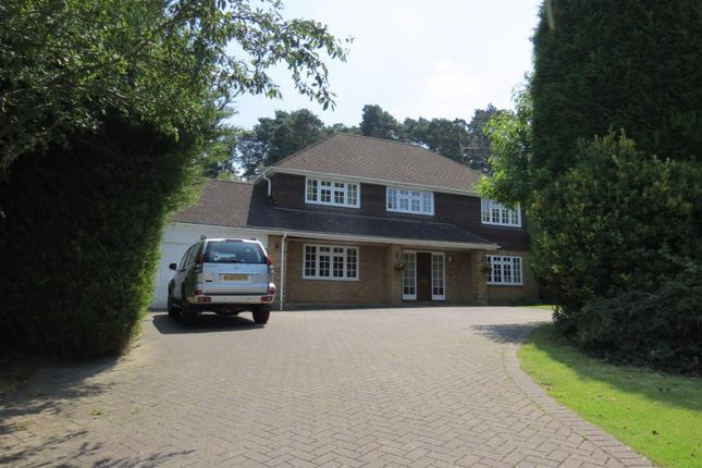 Thumbnail Property to rent in Blackwater, Camberley
