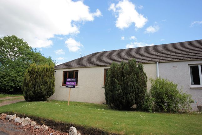 Thumbnail Semi-detached bungalow for sale in Old Rayne, Insch, Aberdeen