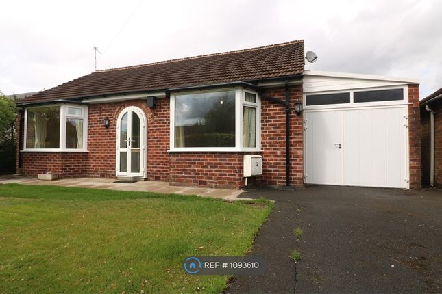 Thumbnail Bungalow to rent in Park Avenue, Bramhall, Stockport