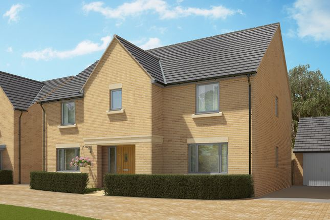 """Thumbnail Detached house for sale in """"The Wells Variation"""" at Crabtree Road, Cambridge"""