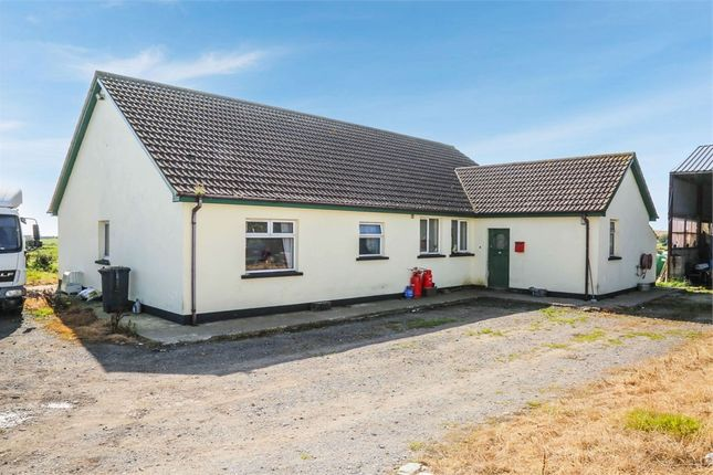 Thumbnail Detached bungalow for sale in Ballygarvigan Road, Portaferry, Newtownards, County Down
