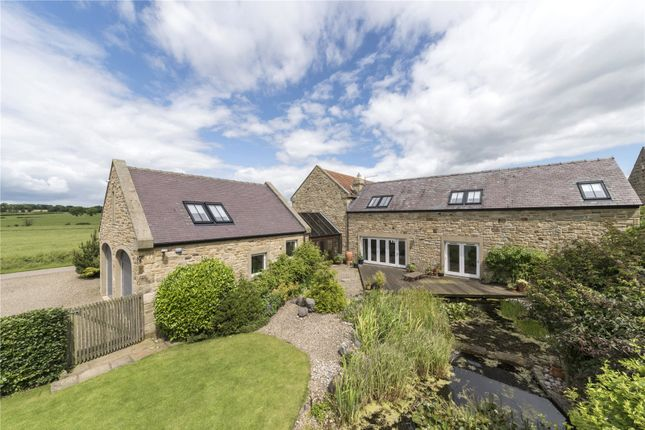 Thumbnail Detached house for sale in Whalton, Morpeth, Northumberland