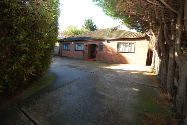 Thumbnail Detached bungalow for sale in Timberlog Lane, Basildon, Essex