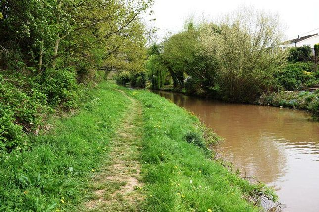 Dsc_0014 of Mill Farm Park, Bulkington, Bedworth CV12