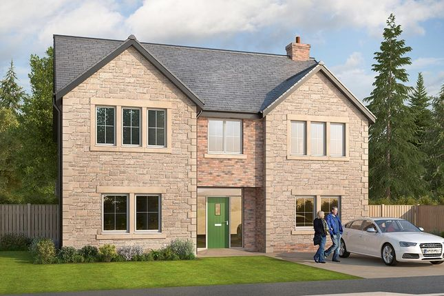 "Thumbnail Detached house for sale in ""The Oakham"" at Glenarm Road, Wynyard Business Park, Wynyard, Billingham"
