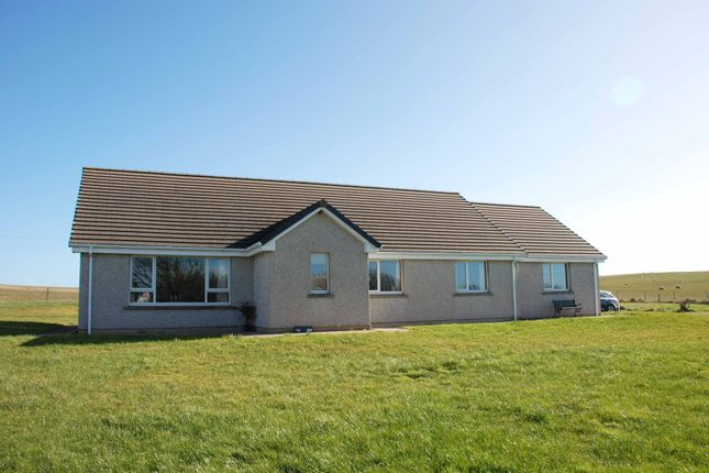 Thumbnail Detached bungalow for sale in Tayburn, St Margaret's Hope