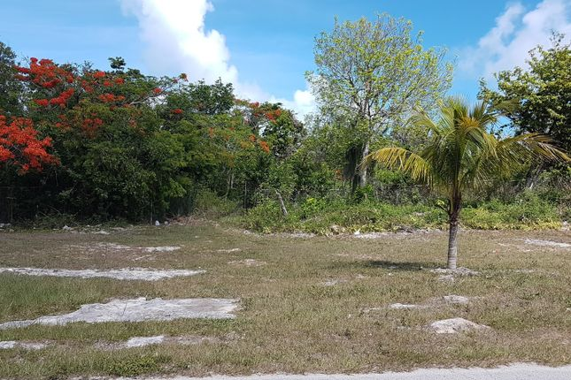 Bernard Road, Nassau/New Providence, The Bahamas