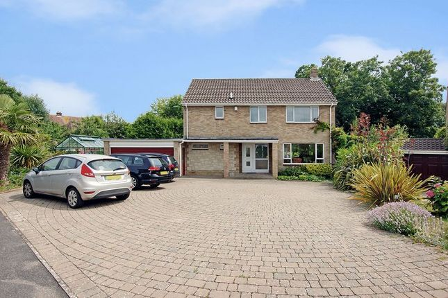 Thumbnail Detached house for sale in Harvester Drive, Fareham