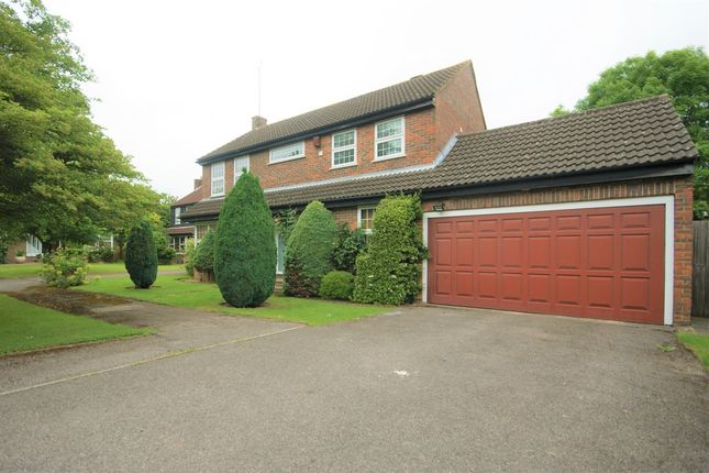 Thumbnail Detached house to rent in Grove Farm Park, Northwood