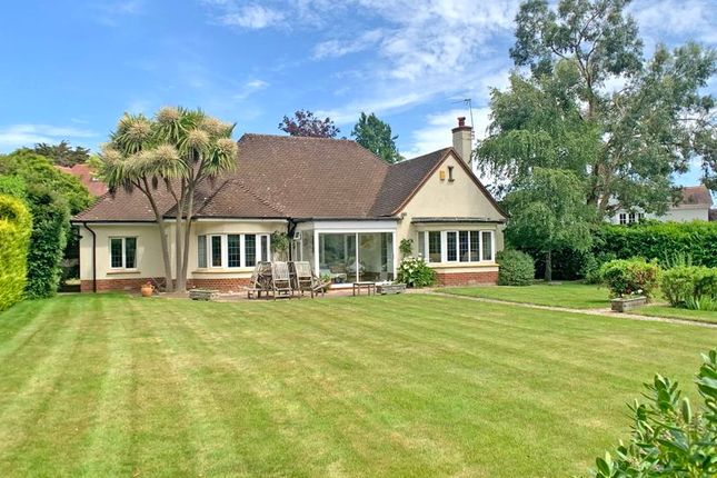 Thumbnail Detached bungalow for sale in Gorseway, Convent Road, Sidmouth