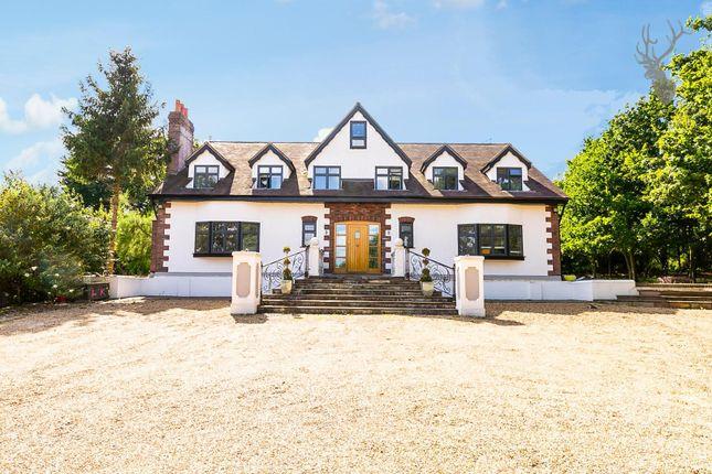 Thumbnail Detached house to rent in Stapleford Road, Stapleford Abbotts, Romford