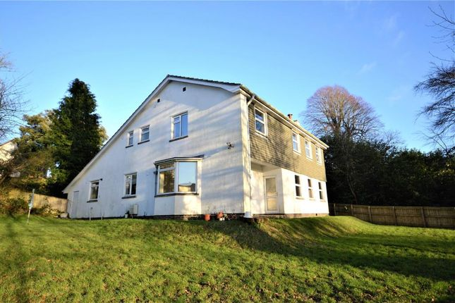 Thumbnail Detached house to rent in Dunheved Road, Launceston, Cornwall