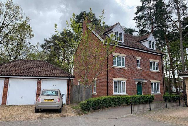 5 bed detached house to rent in Heathland Way, Mildenhall IP28