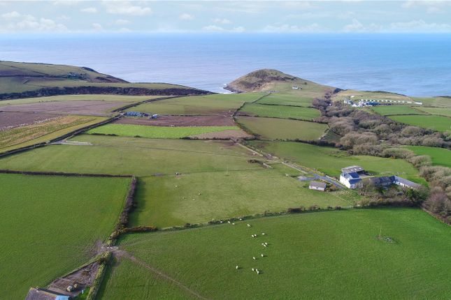 Picture No. 29 of Ffynnon Grog, Mwnt, Ferwig, Cardigan SA43