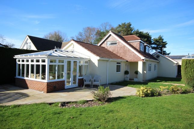 Thumbnail Detached house for sale in Moneyfly Road, Verwood
