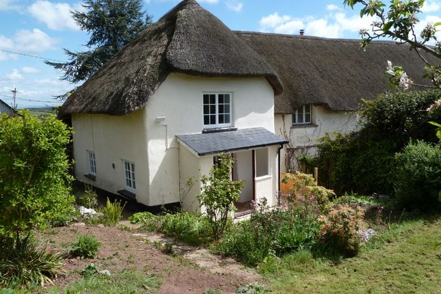 Thumbnail Cottage to rent in Clapham, Exeter