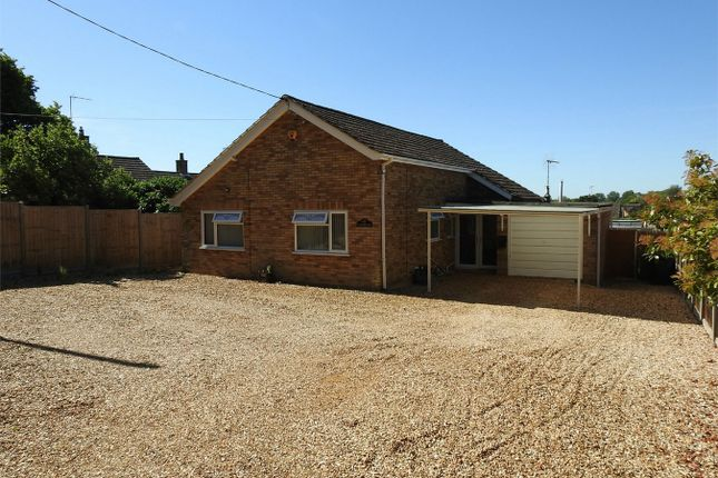 Thumbnail Detached bungalow for sale in Lynn Road, Stoke Ferry, King's Lynn