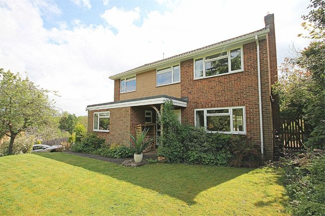 Thumbnail Detached house for sale in Orchard Close, Hollowell, Northampton