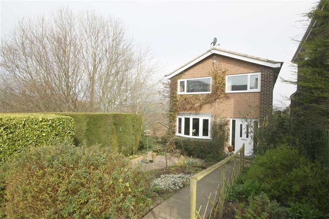 Thumbnail Property for sale in Briardene, Lanchester, Co Durham