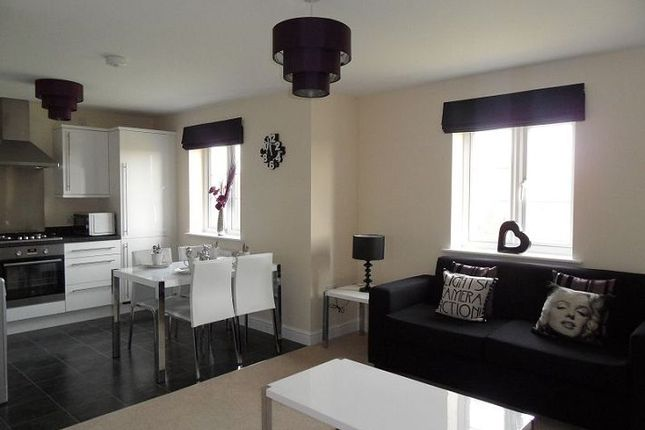 Thumbnail Flat to rent in Minster Court, Shelton Lock, Derby
